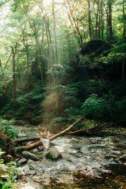 ricketts-glen-waterfall-pennsylvania-sullivan-falls-elopement-8844